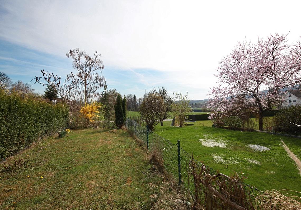 4_Obersee_Immobilien_Garten
