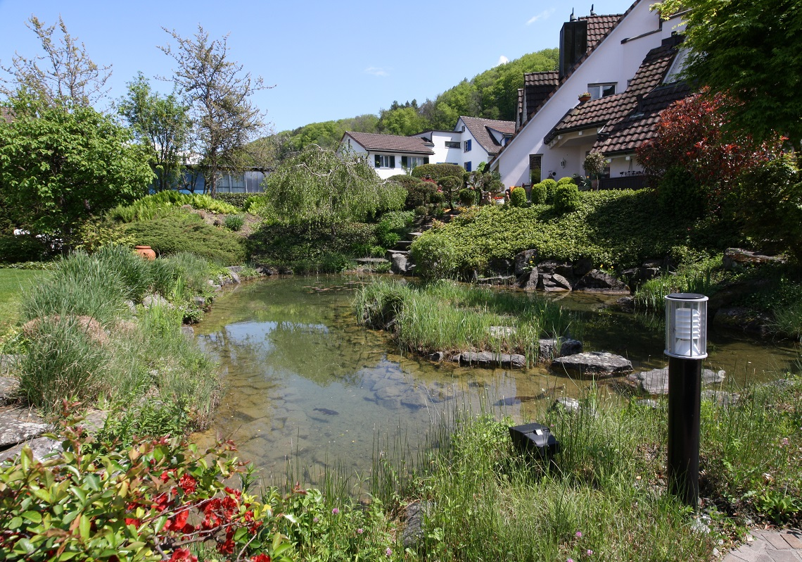 2_Obersee_Immobilien_Teich